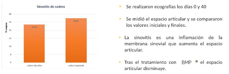 Sinovitis en la artrosis canina