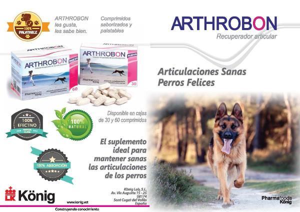 Arthrobon Artrosis perro