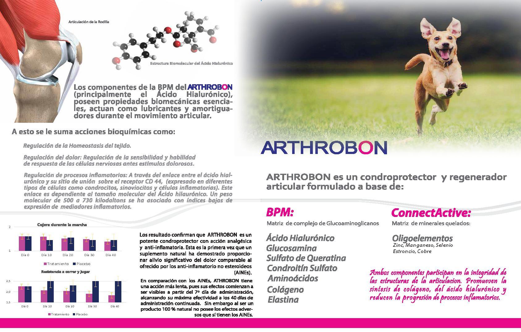 Artrosis perro Arthrobon_2