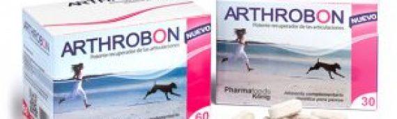 Nuevo estudio sobre condroprotectores para perros y la artrosis canina